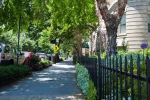 Apartments-for-Rent-Adams-Morgan-Washington-DC