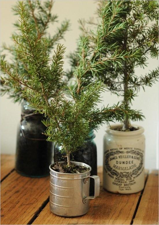 sapling-tabletop-christmas-tree