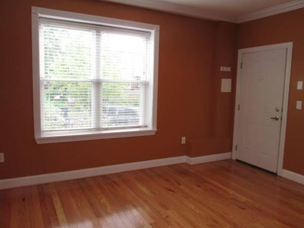 Truly Pet Friendly Apartment in Petworth   Bedroom