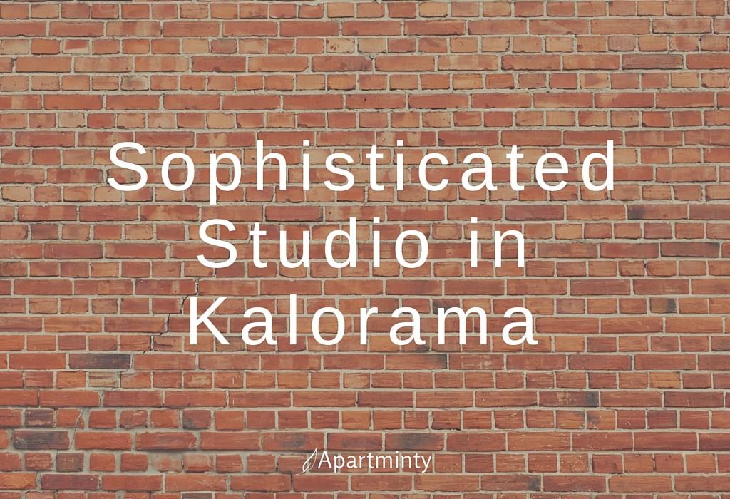 Sophisticated Studio in Kalorama