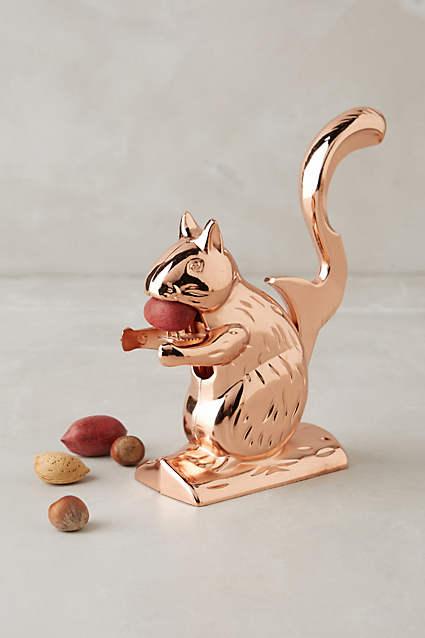Apartminty Fresh Picks | Take A Walk On The Wild Side | Squirrel Nut Cracker
