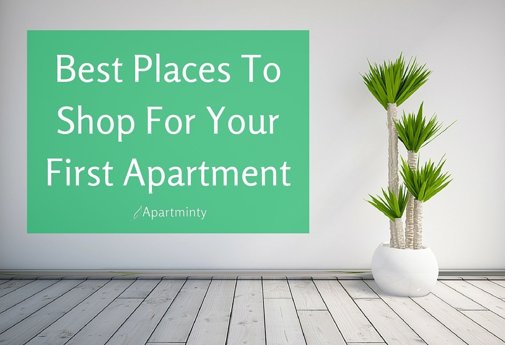Best Places To Shop For Your First Apartment