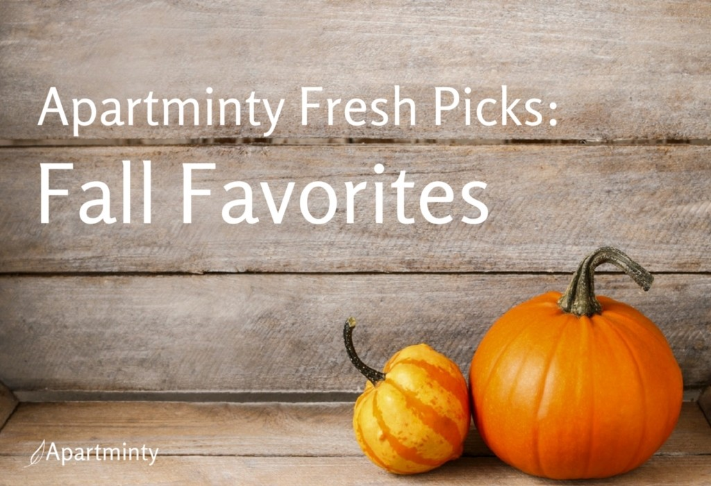 Apartminty Fresh Picks: Fall Favorites