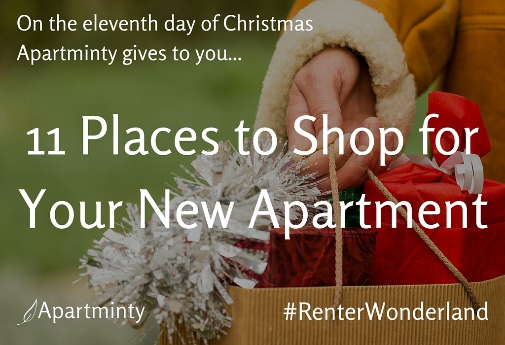Renter Wonderland: 11th day of Christmas