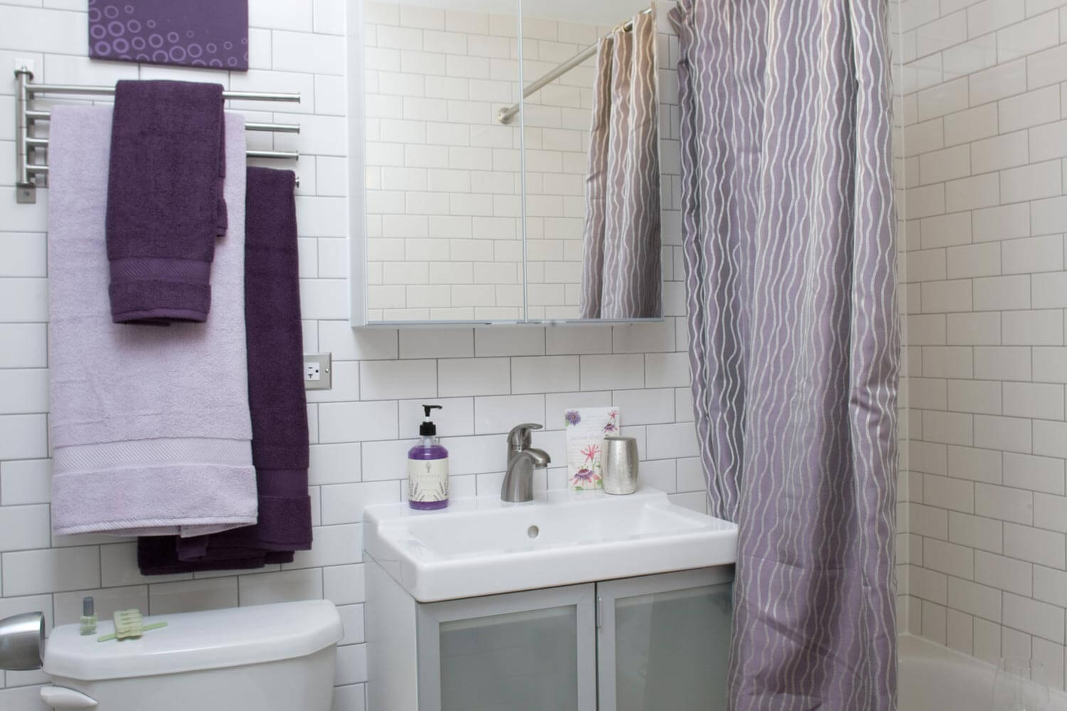 Affordable open concept 1 bedroom apartment in chicago for Bathroom for rent