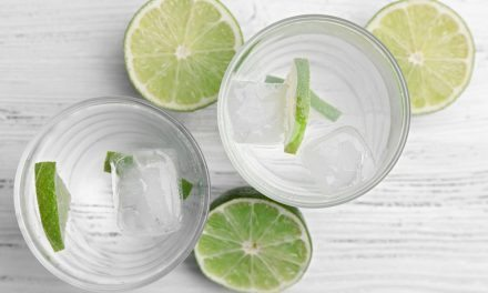 Apartminty Fresh Picks: The Coolest Ice Cubes Your Cocktail Has Ever Seen