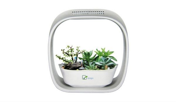 Apartminty Fresh Picks: Herb Garden Essentials For The Apartment ...