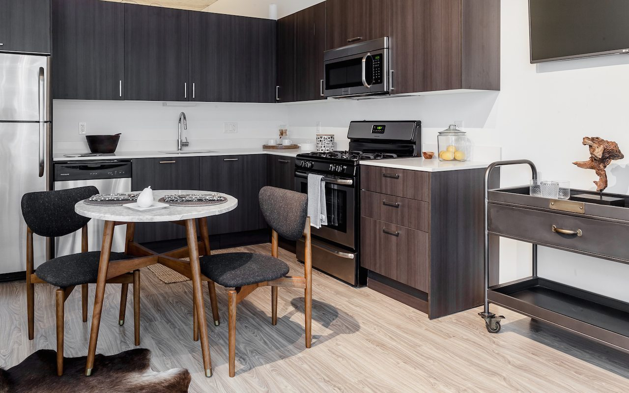 1333-south-wabash-luxury-apartments-south-loop-chicago-il-gourmet-kitchen