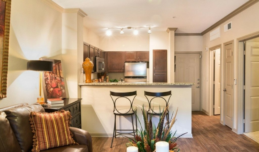 Spacious one bedroom apartment in houston 39 s midtown neighborhood apartminty for One bedroom apartments houston