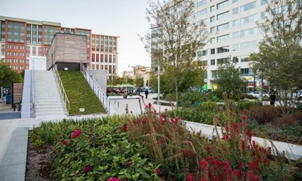 Capitol Riverfront DC Neighborhood Guide