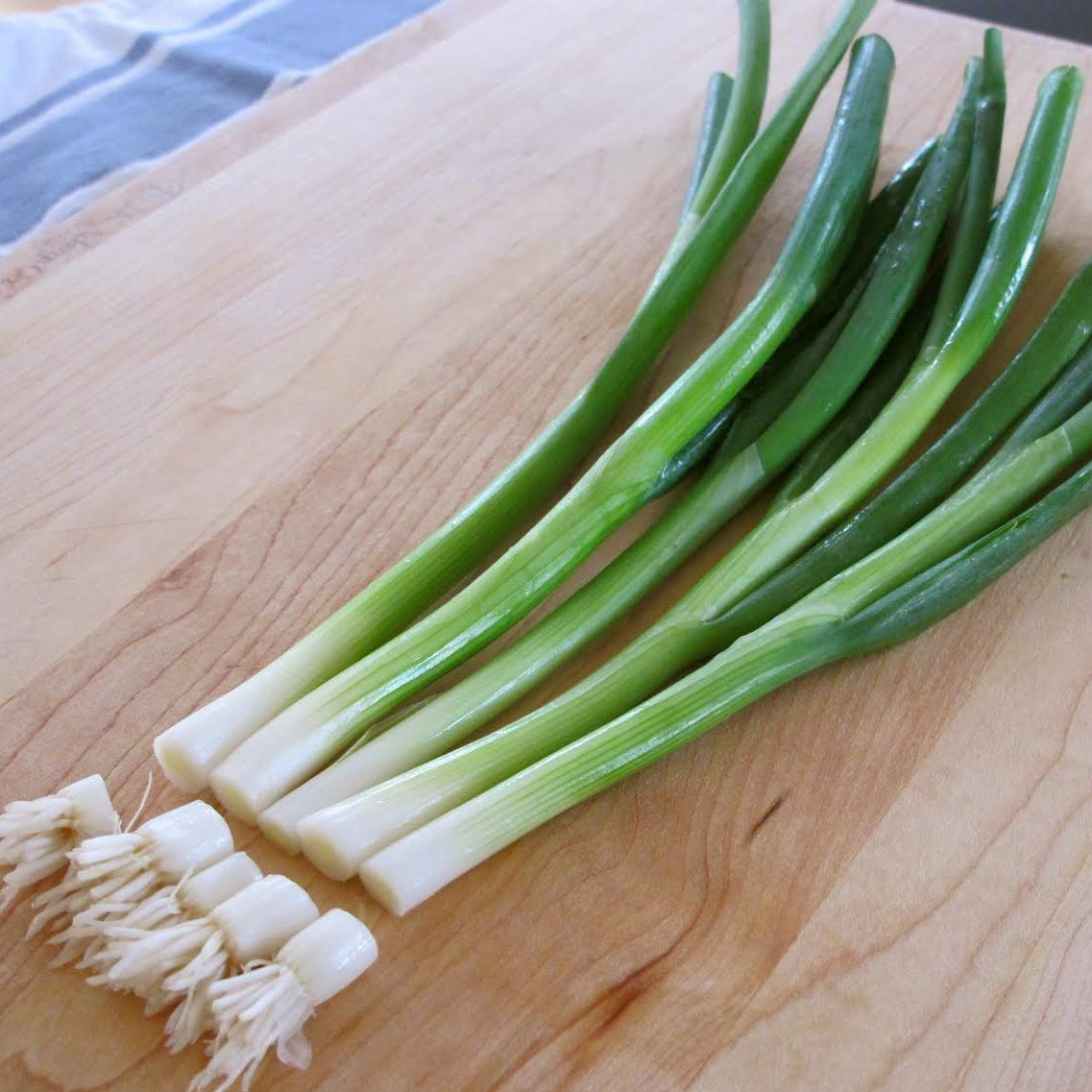 Best Plants For Indoor Vegetable Garden | Growing Green Onions/Scallions