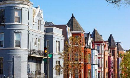 Shaw DC Neighborhood Guide