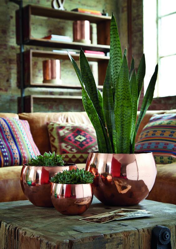 Spring Decor Trends | Apartment Decor Ideas