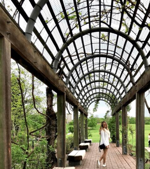 Picnic Spots In DC | National Arboretum