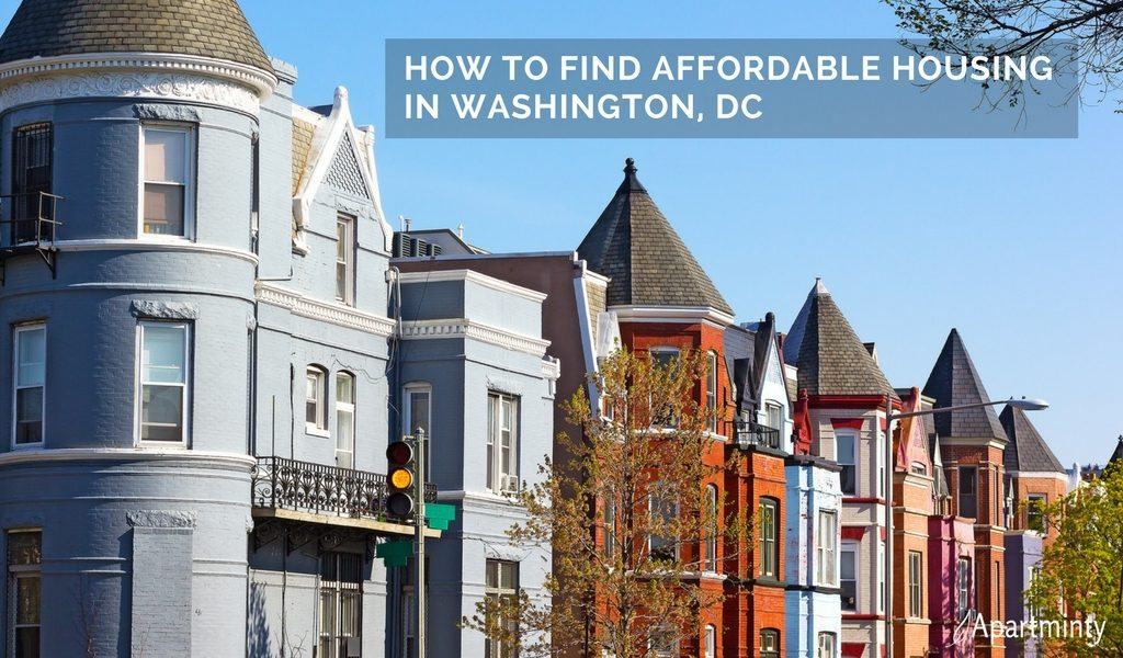 washington dc affordable housing options apartminty
