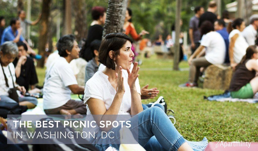 Best Picnic Spots In DC
