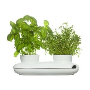 Summer Bar Cart Items | Self-Watering Herb Planter