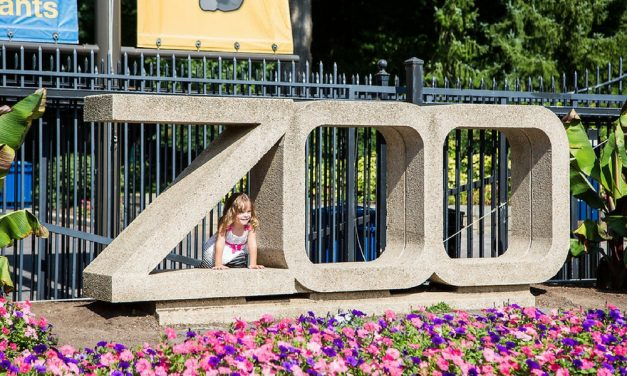 Woodley Park DC Neighborhood Guide