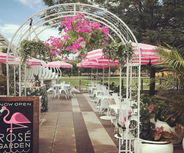 National Rosé Day | Whaley's Rosé Garden In Washington, DC
