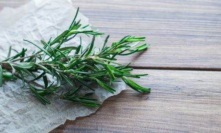Summer Recipes For Using Up Your Fresh Herbs
