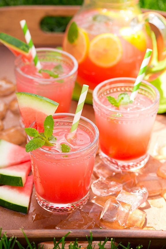 Watermelon Recipes for National Watermelon Day | Watermelon Lemonade