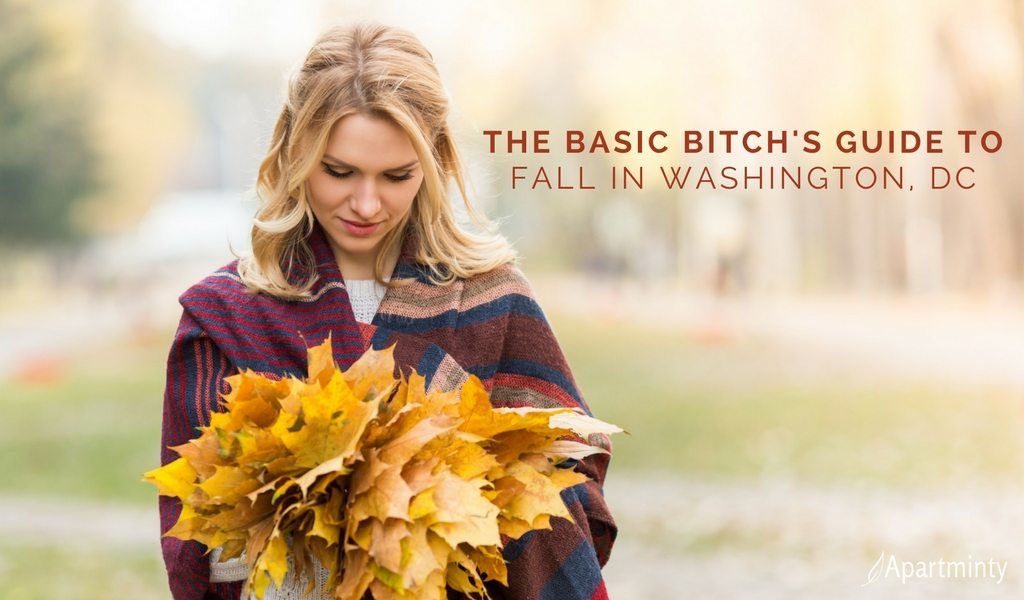 The Basic Bitch's Guide To Fall In DC | Fall Events & Activities In Washington, DC
