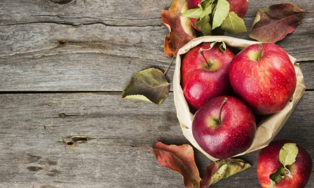 The Best Apple Recipes For Using Up Your Orchard Haul