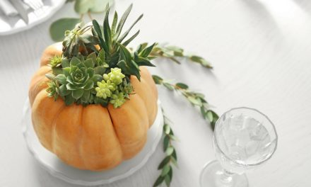 5 Unique Ways To Decorate With Pumpkins This Year
