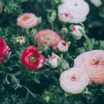 Pinspiration: Big Bold Floral Decor