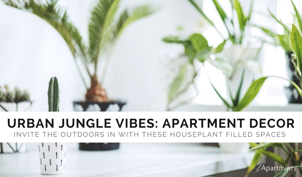 Urban Jungle: Decor Inspiration For Plant Lovers