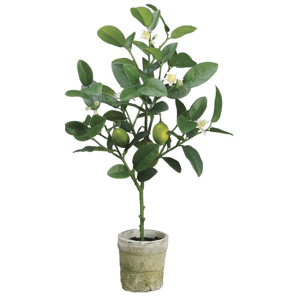 Decorating With Faux Plants   Faux Lemon Tree Topiary