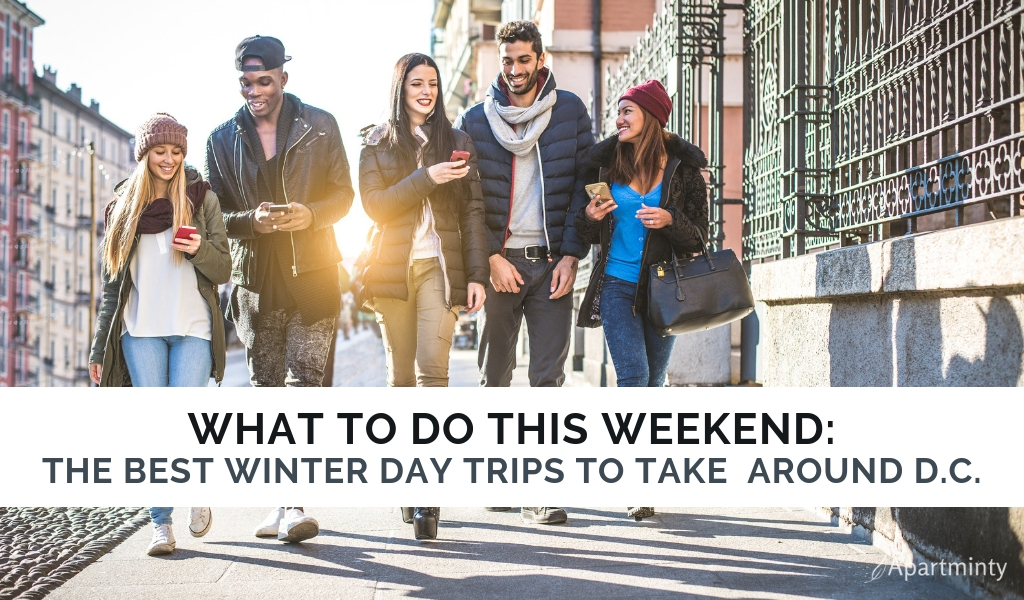 Winters in DC  Day trips from Washington, DC